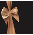 Gift Card with Silk Ribbon and Bow vector image vector image