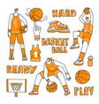 lined set basketball - basketball vector image