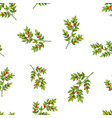 seamless pattern with christmas berry vector image vector image