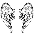 Wings sketch cartoon vector image