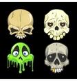 halloween skull Isolated vector image