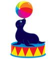 Circus sea bear vector image
