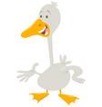 Cute goose farm animal character vector image