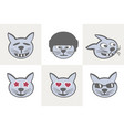 different cat grimaces vector image vector image