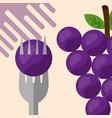 fruit fresh natural vector image