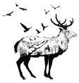 Hand drawn deer for your design wildlife concept