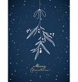 Handwritten Christmas with hanging mistletoe Night vector image vector image