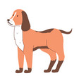 image brown unknown breed dog domestic animal vector image vector image