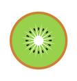 kiwi fruit slice closeup icon green round piece vector image vector image