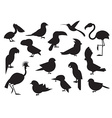 World Birds Outline Icons vector image vector image
