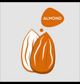 almond nut icon vector image vector image