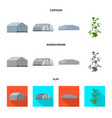 design of greenhouse and plant icon vector image
