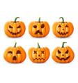 halloween background pumpkin greeting card vector image vector image