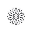 sun flower line icon concept sun flower flat vector image vector image