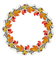wreath hand drawn mountain ash and autumn leave vector image vector image