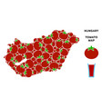 hungary map composition of tomato vector image vector image