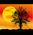 landscape with sun and tree vector image