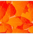 Seamless autumn leaves pattern plus EPS10 vector image