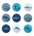 whales and fish flat icons vector image