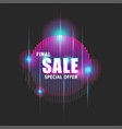 bright advertising banner with text final sale vector image vector image