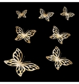 Gold Lace butterfly on black background vector image vector image