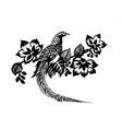 Hand drawn pheasant in the grass and flowers vector image
