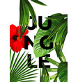 jungle poster vector image vector image