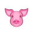 pig head livestock pork beef animal vector image