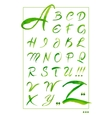 Set hand-drawn calligraphy alphabet on white vector image vector image