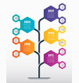 vertical timeline infographics development vector image