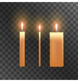 candles on transparent background vector image