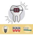 dental braces elements vector image