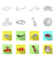 design of sea and animal logo set of sea vector image vector image