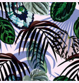 leaves monstera palm pattern vector image vector image