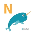 letter n narwhal zoo alphabet english abc vector image vector image