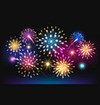 night salute fireworks vector image vector image