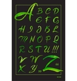 Set hand-drawn calligraphy alphabet on black vector image vector image