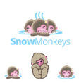 snow monkeys or japanese macaque vol 2 vector image vector image