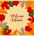 autumn background with leaves and lettering hello vector image vector image