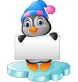 cute little penguin holding blank sign vector image vector image