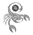 scorpion drawn in entangle style vector image