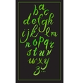 Set hand-drawn calligraphy alphabet on black vector image