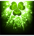 St Patrick's's holiday night background vector image vector image
