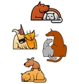 Cartooned friends cat and dog vector image
