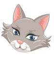 a face of cute cat vector image