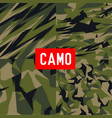 camo pattern camo army camo soldier camo abstract vector image