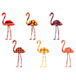 Flamingo pattern Flamingo isolated vector image vector image