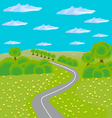 landscape with road through field and forest vector image