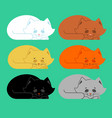 sleeping cat set black and white yellow and brown vector image vector image