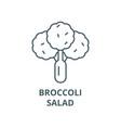 broccolisalad line icon broccolisalad vector image vector image